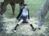 Farmers Young Wife Enjoy when Stay Alone with Horses
